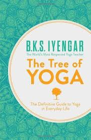 pin by anne minter on iyengar yoga yoga books yoga and books