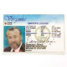 Virginia Winstone Edge ray Darius Of The - Driver's Jedburgh Closet Darkness License Golden