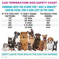 Car Temperature Dog Safety Chart Lets Keep Our Fury