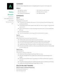 Style Of Resume Format