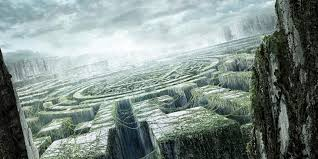 Image result for the maze runner glade and maze from top view