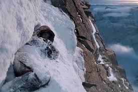 1996 Everest Disaster Rob Hall Photos And Description Disaster