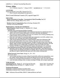 Resume High School Camp Counselor Resume