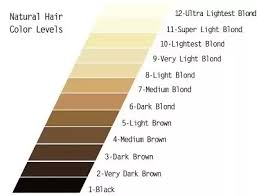 What Hair Color Is Darker Strawberry Blonde Or Light Brown