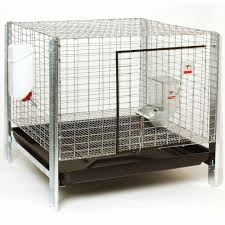 Little Giant Complete Rabbit Hutch Kit | QC Supply