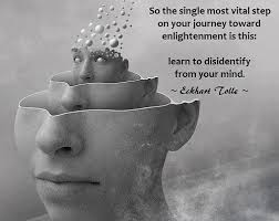 Enlightenment Quotes Enchanting Enlightenment Quotes Page 48 Meditation Consciousness