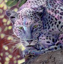 Beautiful Creatures Grayscale Adult Coloring Book Leopard Coloring