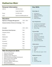 st line support cv template examples of a good resume template good resume layout