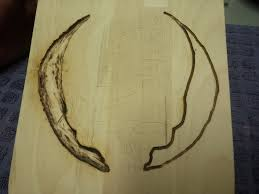 Wood Carving Dremel 1st Wood Carving With Pine Burning Pen And Dremel 3000 Album On