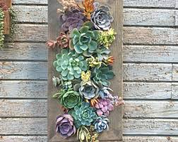 popular items for living wall on live succulent wall art with living wall etsy