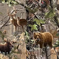 camo deer wallpapers 84 98 kb