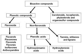 Agro-industrial wastes as sources of <b>bioactive</b> compounds for food ...