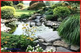 pond ideas plans koi design small garden