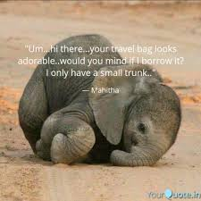 I Love Elephant Quotes Animal Quotes