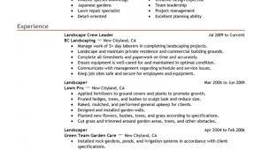 Build Resume Free Mesmerize Create Resume Free Save Tags Build Resume Free Gardening 54