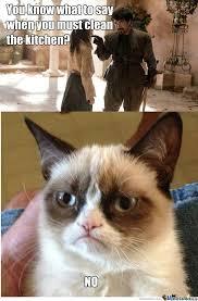 Grumpy Cat No Meme Tumblr - grumpy cat no meme tumblr with grumpy ... via Relatably.com