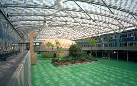 Image result for school courtyards