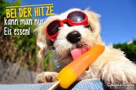Hitze Eis Essen Coole Sprüche Bilder Für Den Sommer