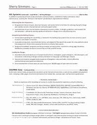 Professional Resume Writers Inspiration 28 Awesome Professional Resume Writers Cost Bizmancan