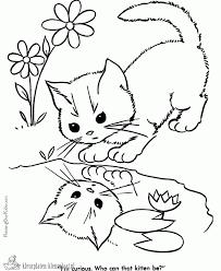 Catsssssssssss Emojigirljouwwebnl