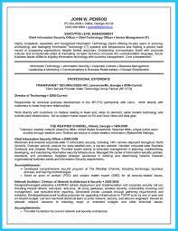 Cto Resume Example Cto Resume Sample Download Danayaus 10