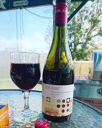 aldi s 6 99 one road shiraz recently took out the top prize in the great australian shiraz