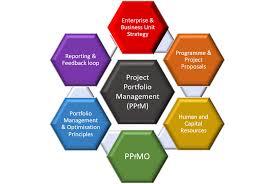 Project Portfolio Management And Optimisation Otc