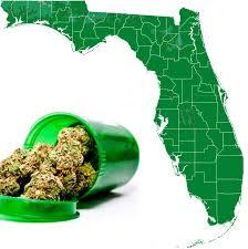 Like Florida Alcohol Regulate Marijuana Norml Of -
