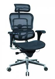 coolest office chair. raynor ergohuman coolest office chair