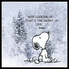 snoopy memes | The Every 48 Workout Blog via Relatably.com