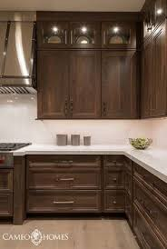Image Under Kitchen Decor In Ne Kitchens With Dark Cabinets Dark Brown Kitchen Cabinets Stain Pinterest 55 Best Traditional White Kitchens Images Traditional White
