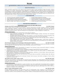 Executive Resume Samples Resume Prime Throughout Resume Examples