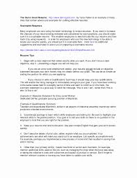 Contoh Resume Computer Science Beautiful Example Professional