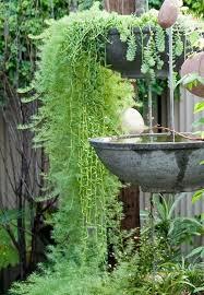 Small Picture Best 25 Garden design online ideas on Pinterest Privacy trellis