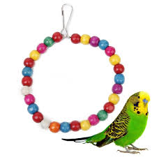 colorful swing bird toy parrot rope harness cage