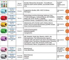 17 Best Phlebotomy Order Of Draw Images Phlebotomy