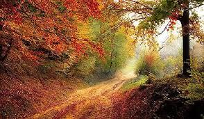 robert frost s the road not taken