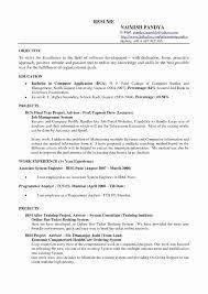 24 Resume Template For Google Docs Brucerea Com