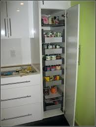 ikea pantry storage ideas pantry storage cabinet pantry home design ideas kitchen pantry cabinet freestanding kitchen