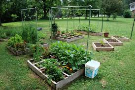 Vegetable Garden Layout South Africa The Garden Inspirations