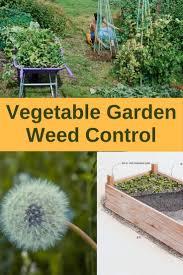 off season garden weed control