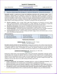 Finance Manager Resume Sample Financial Manager Resume Pdf Unique Project Finance Contegri Of 23
