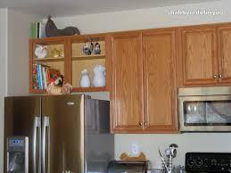 To Redo Kitchen Cabinets Redoing Kitchen Cabinet Ideas Miserv