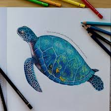 Small Picture 910 best Art Coloured Pencils Colored Pencils images on
