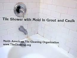 orange mold in shower shower caulk mold bathroom caulk how to get rid of mold in orange mold in shower