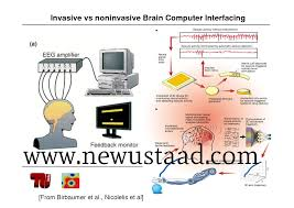 human brain essay essay on human brain structure and function computer vs human brain essay full discussion topiccomputer vs human brain
