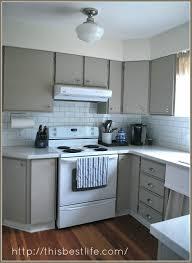 Melamine Kitchen Cabinets Update White Melamine Kitchen Cabinets