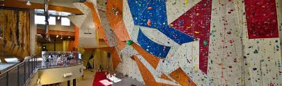 overview of stone summit on artificial rock climbing wall cost with stone summit climbing and fitness gyms