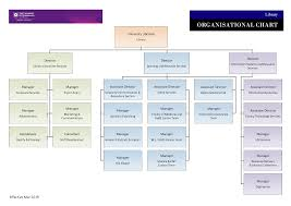 Library Org Chart 43 Skillful Co Director Org Chart