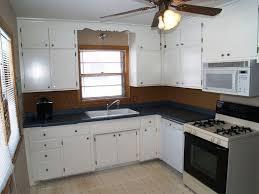 Rustoleum Kitchen Cabinet Kitchen Amazing Rustoleum Cabinet Transformations Photos Of